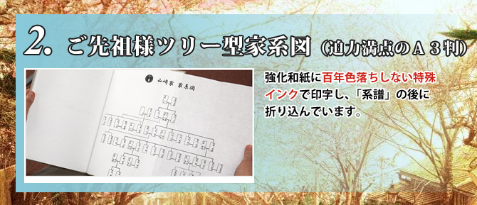 家系図株式会社 作成 和綴じ家系図の特徴 ご先祖様ツリー型家系図